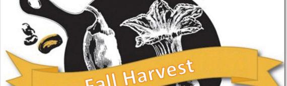 PlaySmart Fall Harvest Iron Chef Event